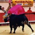 Julio robles le torero du terroir