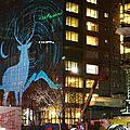 Un peu de neige, des lumières et un grand sapin: joyeux noël montréalais!