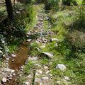 2009 09 07 Un chemin d'est au Jas