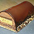 Bûche chocolat praliné