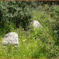 Menhir cassé en deux parties - Région de Tizzà -
