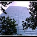 2008-07-26 - WE 17 - Boston & Cambridge 093