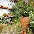 serre abandonnèe-Terra Botanica-Angers49