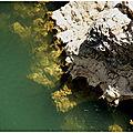 le joyau-Gorges de l'Hérault