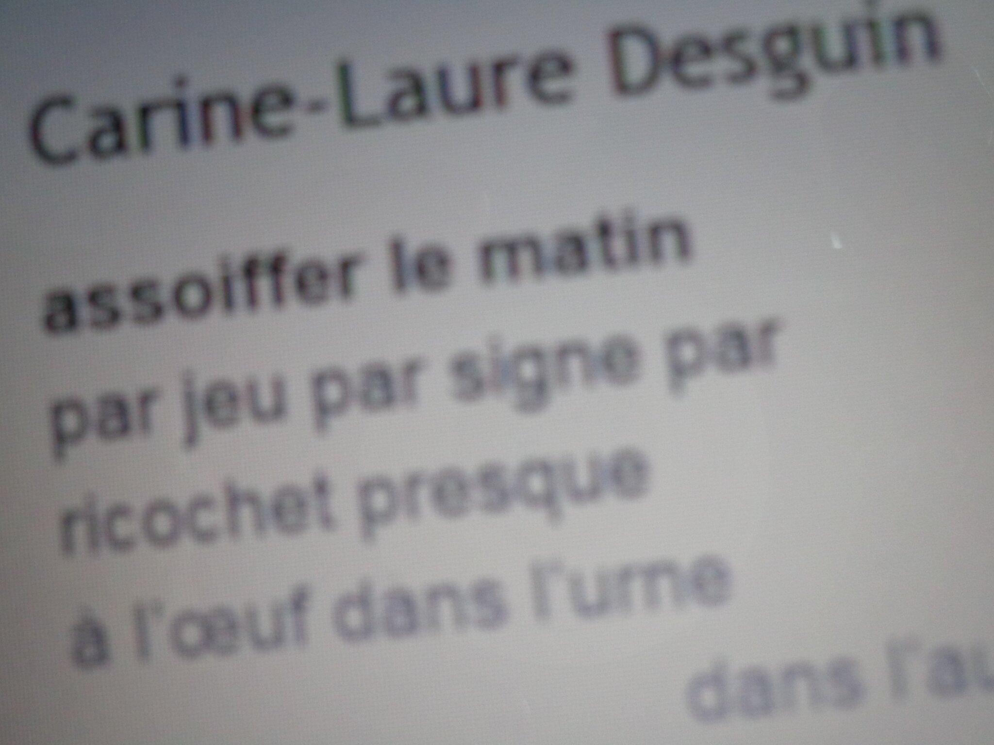 Dans Lichen 14, deux textes de C.-L. Desguin
