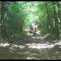 dans les bois, sur le Chemin de l'Ouillon