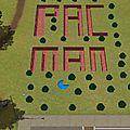 Fondue de Sims