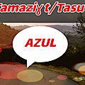 YENNAYER 2969 JOUR DE L'AN AMAZIGH : jour férié le 12 janvier, célébration dans chaque région en Algérie à partir du 11 janvier