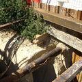chantier u tramway de nice aout 2005 031