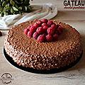 Gâteau au <b>chocolat</b> et framboises