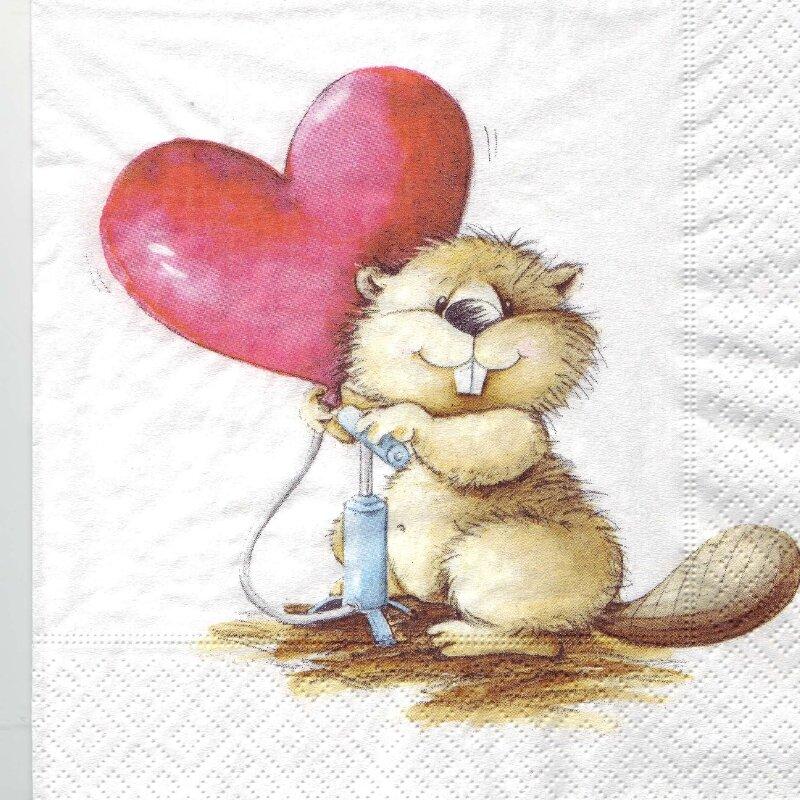 castor et coeur x 18