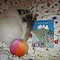 Mon histoire du soir # 3 : le rêve de max - sylvia plath et rotraut susanne berner