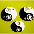 yin yang lentilles