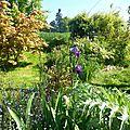 Un jardin, même tout petit, c'est la porte du paradis..... marie angel