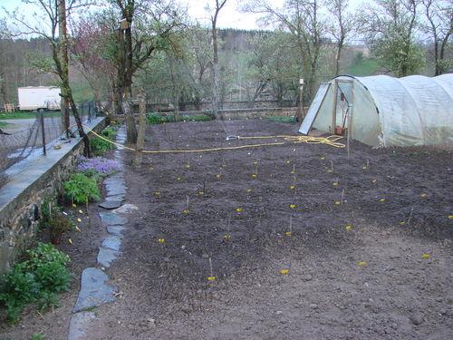 2008 05 06 Le premier arrosage du jardin suite au semis de fleurs