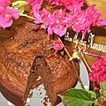 Gâteau moelleux chocolaté et souvenirs de ploumanach' et perros guirec