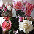Bouquet roses 14 mars 2015 7