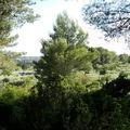 Bleu, bleu, le ciel de <b>Provence</b>!...