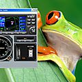 Simulateur ... de GPS