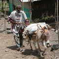 photos ethiopiedjibouti 166