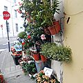 Chauffin fleurs