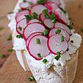 Tartines au chèvre frais et aux radis