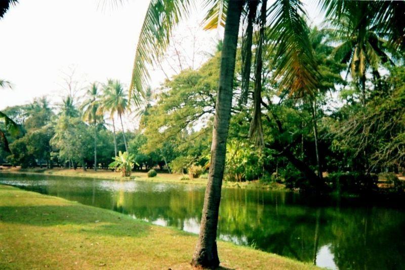 Sukhotaï Le lac