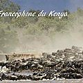 voyage kenya 2012