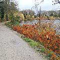Paysages d'<b>automne</b>