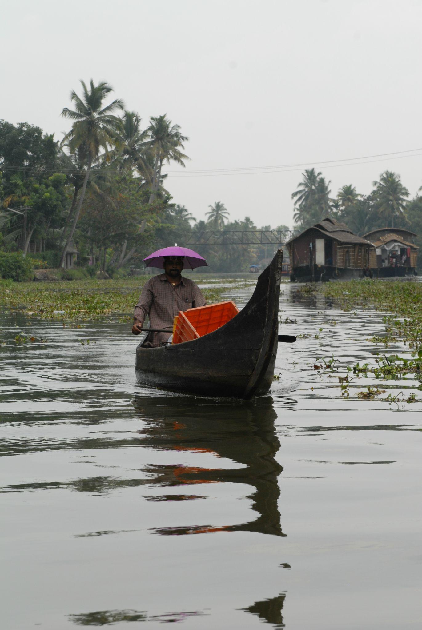 ballade sur les backwaters à Allepy