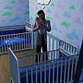 Le legacy des Sibel (Sims 3)