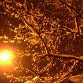 Neige, neige, neige…
