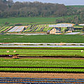 Sécheresse en France - 80 départements en restriction d'eau - Drought in France - 80 <b>departments</b> in water restriction