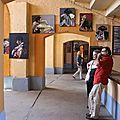 Exposition taurine aux arènes de bayonne