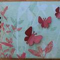 Mini-Diane-papillons