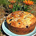 Gâteau aux mûres au fromage blanc et à la crème fraîche (souvenir d'enfance)
