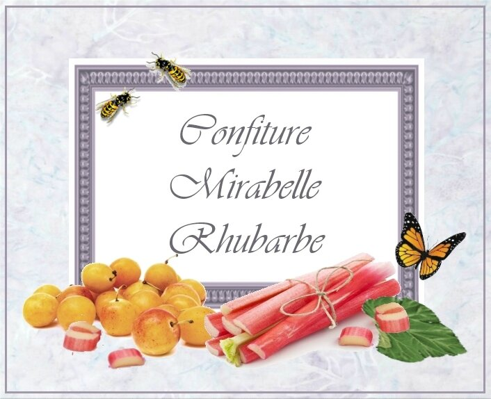 conf mirabelle rubharbe