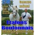 Concours des etalons 2014 - samer - ferme de la suze