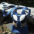 Un titouan bleu