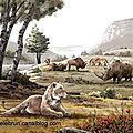 Animaux prehistoriques 2