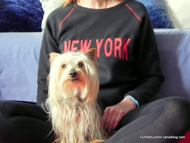 new york1-001