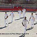 Plan d'Orgon 25.06.2016