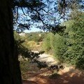 1605 - Les ocres de Roussillon 22 septembre