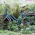 vélo végétation_8001