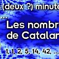 Deux (deux ?) minutes pour les nombres de catalan
