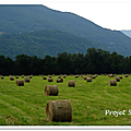 Projet 52 - agriculture