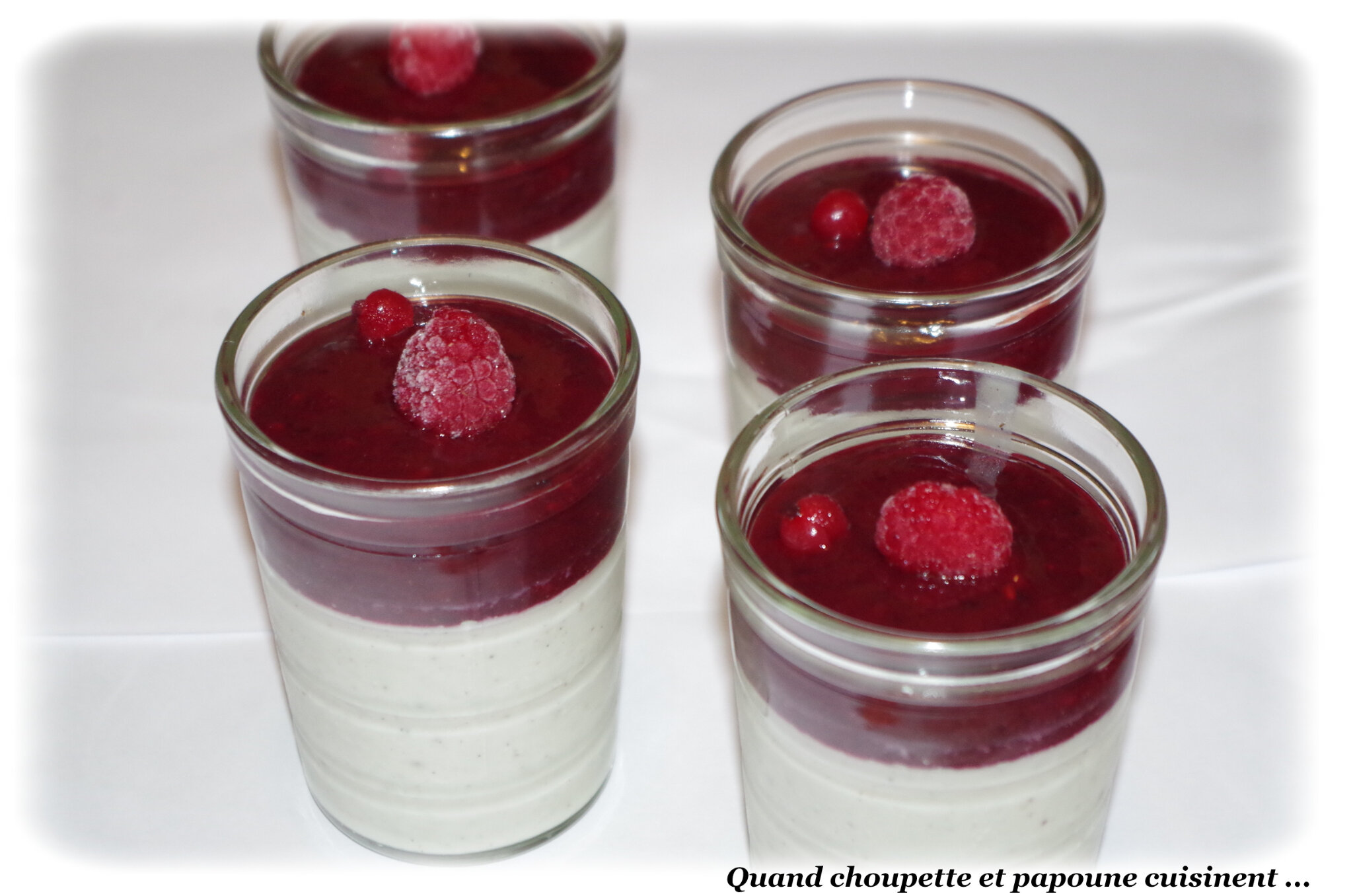 PANNA COTTA AU LAIT DE COCO ET FRUITS ROUGES