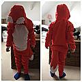 Costume de renard *carnaval2018*