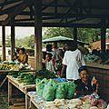 Cacao, village hmong en guyane