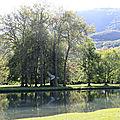 la <b>baleine</b> du chateau de Vizille